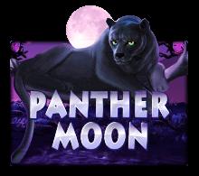 ทดลองเล่นสล็อตPanther Moon